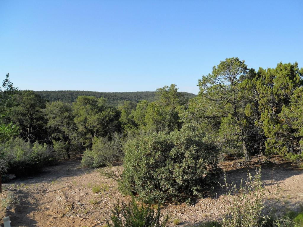 11 Rancho Verde Road - Photo 1