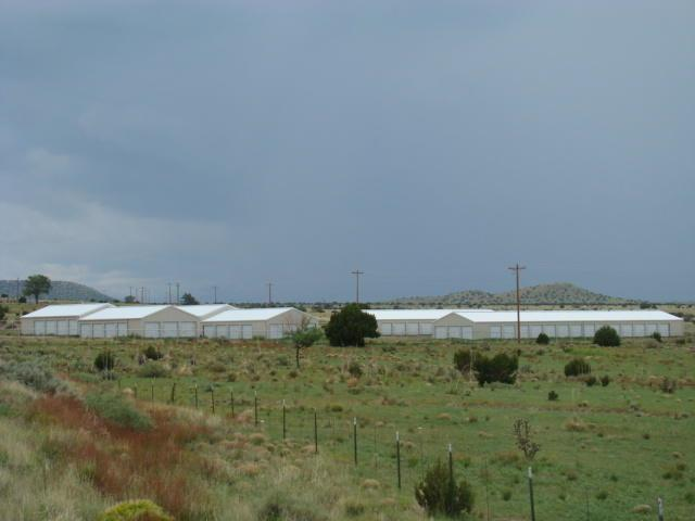 Broaddus Storage, Magdalena, NM 87825 (MLS #877687) :: Campbell & Campbell Real Estate Services