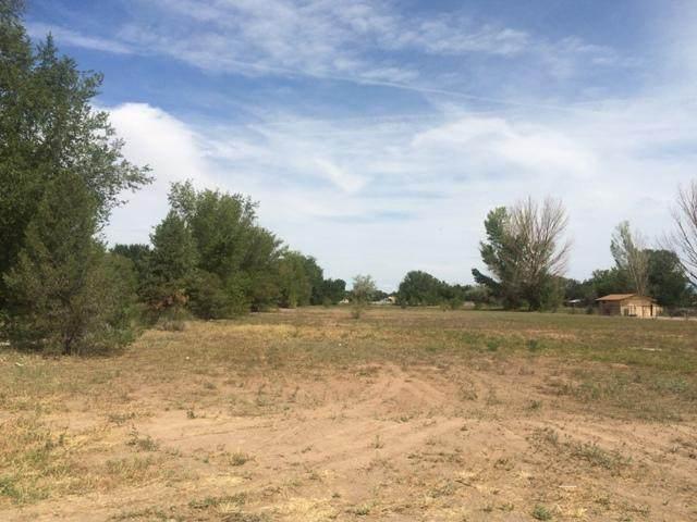 Morrison, Bosque Farms, NM 87068 (MLS #893592) :: The Buchman Group