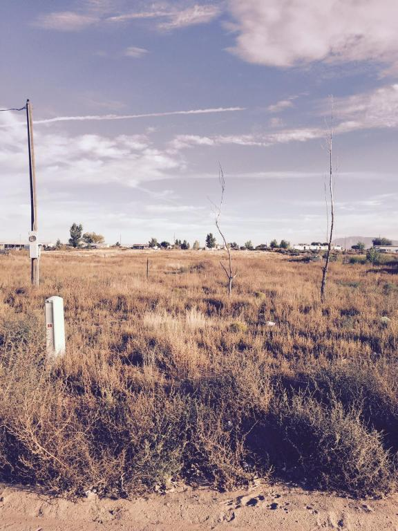 55 Calle Medio, Los Lunas, NM 87031 (MLS #904169) :: Campbell & Campbell Real Estate Services