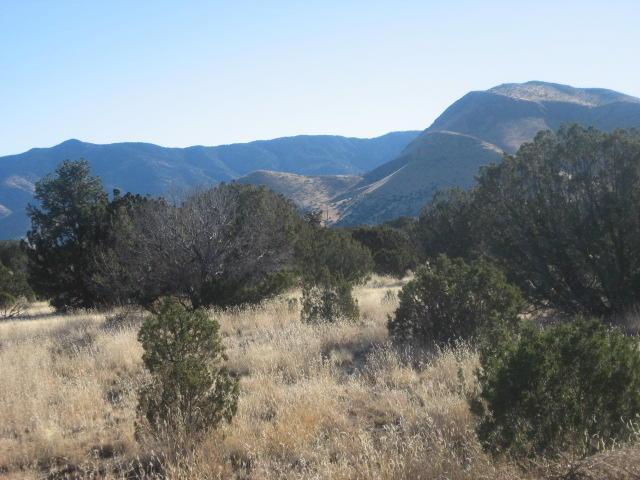 Lot 31 Magdalena Ranch Estates, Magdalena, NM 87825 (MLS #915991) :: Campbell & Campbell Real Estate Services