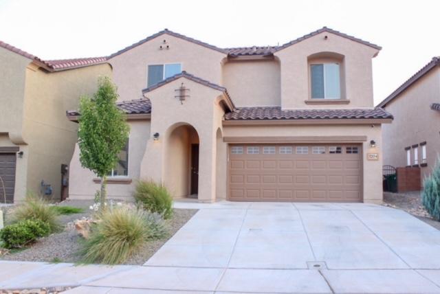 3213 Llano Vista Loop NE, Rio Rancho, NM 87124 (MLS #926648) :: The Bigelow Team / Realty One of New Mexico