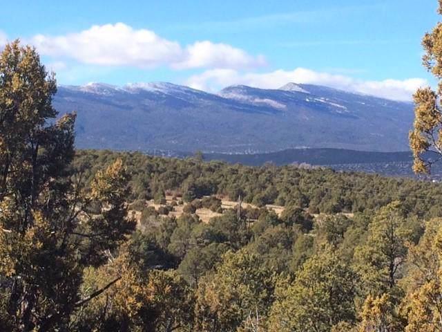 88 Sedillo Canyon Road, Tijeras, NM 87059 (MLS #960915) :: The Buchman Group