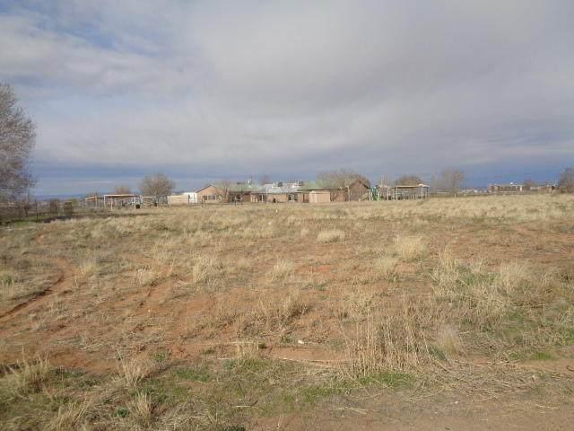 4 Canyon Road, Los Lunas, NM 87031 (MLS #964145) :: The Buchman Group