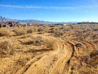 57 Don Julio Road, Corrales, NM 87048 (MLS #983395) :: The Buchman Group