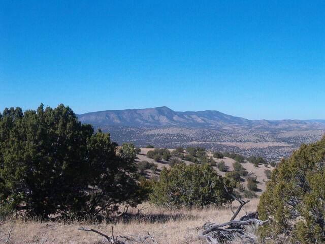 123 Ridge View Road, Magdalena, NM 87825 (MLS #993060) :: Keller Williams Realty