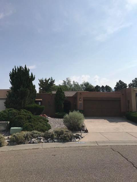 6320 Admiral Rickover Drive NE, Albuquerque, NM 87111 (MLS #996986) :: Sandi Pressley Team