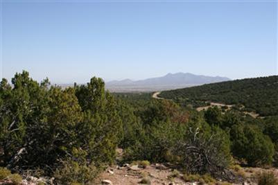 0 La Vista Grande, Sandia Park, NM 87047 (MLS #724542) :: The Bigelow Team / Red Fox Realty