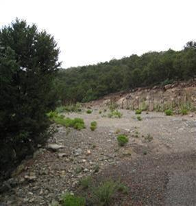 92 Sandia Mountain Ranch Drive - Photo 1