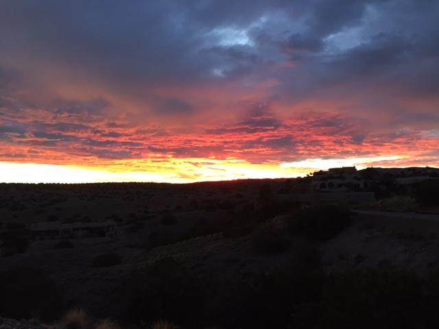 102 Wild Primrose, Placitas, NM 87043 (MLS #922540) :: Berkshire Hathaway HomeServices Santa Fe Real Estate