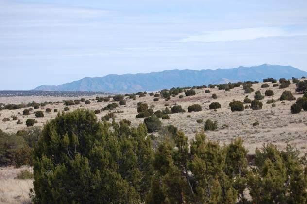 173 Campfire Road, Magdalena, NM 87825 (MLS #947897) :: Berkshire Hathaway HomeServices Santa Fe Real Estate