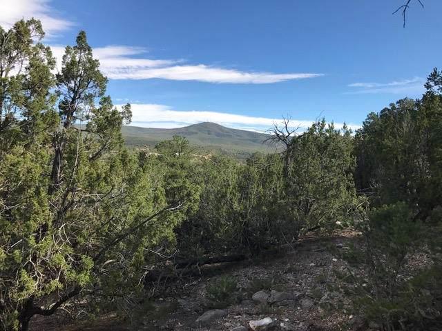 Turquoise Trail (Lot 14), Tijeras, NM 87059 (MLS #963271) :: Berkshire Hathaway HomeServices Santa Fe Real Estate