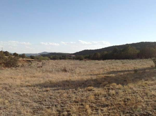 0 Jamokie Lane, Tijeras, NM 87059 (MLS #968094) :: The Buchman Group