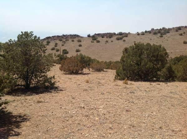 Camino De Cerritos Negros, Placitas, NM 87043 (MLS #968095) :: The Buchman Group