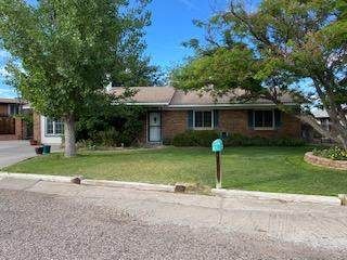 1209 Calle Del Lago, Socorro, NM 87801 (MLS #969641) :: Campbell & Campbell Real Estate Services