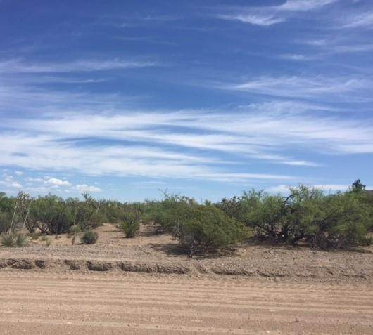 105 Brazos Street, Elephant Butte, NM 87935 (MLS #969687) :: Keller Williams Realty