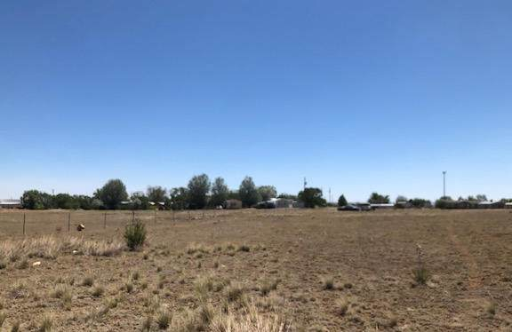End Of Trail, Moriarty, NM 87035 (MLS #970555) :: The Buchman Group