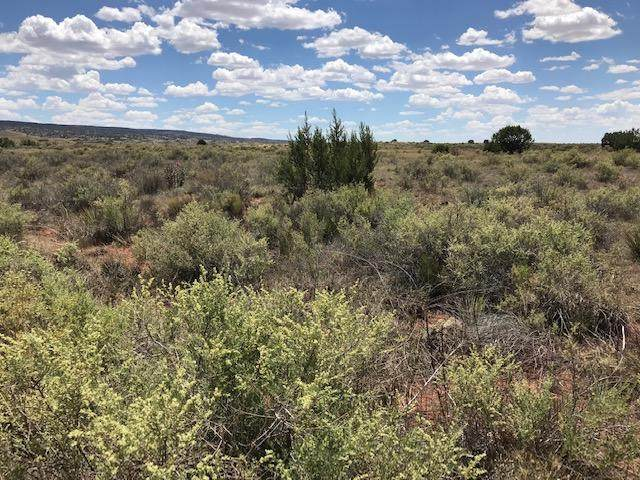 0 Cochiti Road, Laguna, NM 87026 (MLS #970611) :: Keller Williams Realty