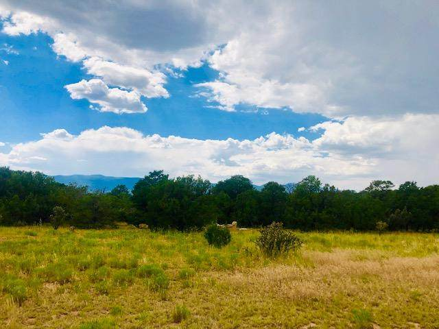 8 Sedillo Hill Place, Tijeras, NM 87059 (MLS #956118) :: Keller Williams Realty