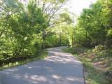P-6 Point Lookout Ln. - Photo 16