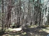 OFF Lost Lake Road - Photo 4