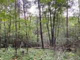 61.13 ac Indian Meadow - Photo 10