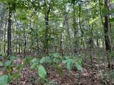 61.13 ac Indian Meadow - Photo 13