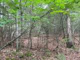61.13 ac Indian Meadow - Photo 3