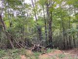 61.13 ac Indian Meadow - Photo 9