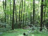 TBD Old Hollow Trail - Photo 3