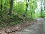 TBD Briar Patch Mountain Road - Photo 2