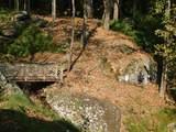 2667 Bear Trail - Photo 5