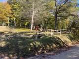TBD Roaring Fork Rd - Photo 19