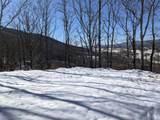 79 acres Old Mountain Rd - Photo 6