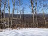 79 acres Old Mountain Rd - Photo 7