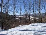 79 acres Old Mountain Rd - Photo 8