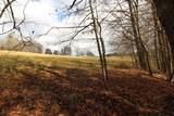 60 B Panther Creek Road - Photo 68
