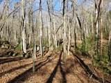 47.5 ac Indian Meadow Lane - Photo 2