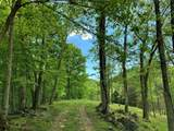 16410 Quail Road - Photo 54