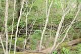 1825 E Fork Ln - Photo 45