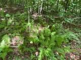 595 Dixie Trail - Photo 9