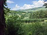 18 acre Old Kentucky Ln - Photo 10
