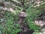 18 acre Old Kentucky Ln - Photo 11