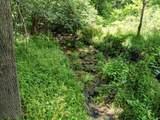 18 acre Old Kentucky Ln - Photo 12