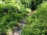 18 acre Old Kentucky Ln - Photo 13