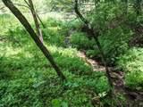 18 acre Old Kentucky Ln - Photo 14