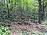 18 acre Old Kentucky Ln - Photo 2