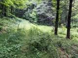 18 acre Old Kentucky Ln - Photo 3