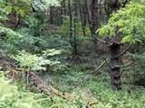 18 acre Old Kentucky Ln - Photo 4