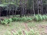18 acre Old Kentucky Ln - Photo 5